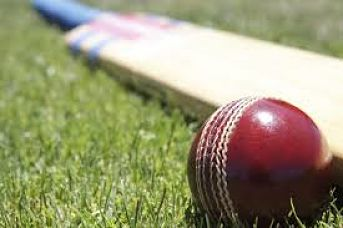 cricket-st-ives_opt